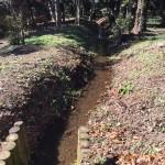 平林寺 野火止用水路