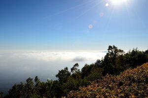 富士山 五合目 雲海