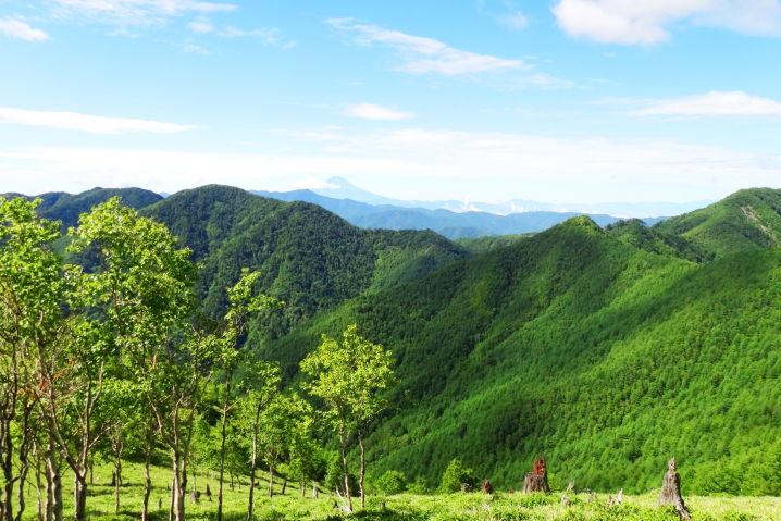 信州 八ヶ岳 ワインディング