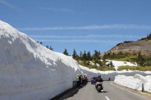 国道292 志賀草津道路 雪の回廊
