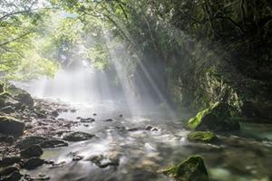 夏の絶景 4位 円原の伏流水