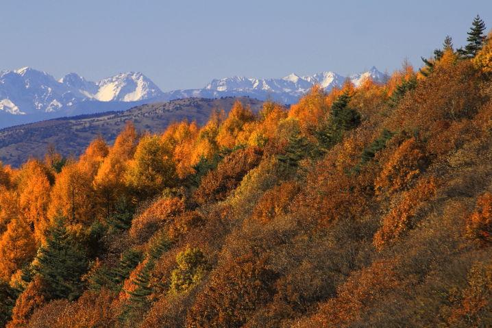 秋の八ヶ岳 ツーリング